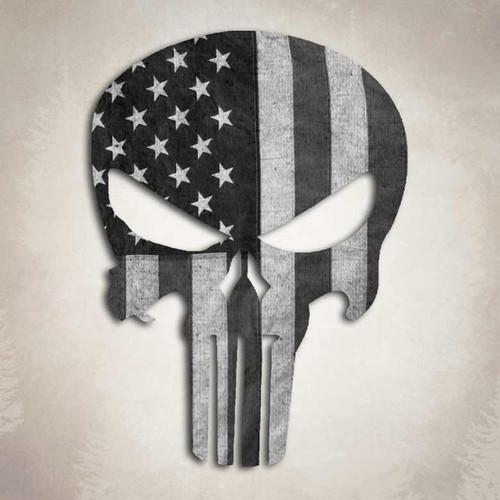 Punisher Subdued American Flag Skull Sticker