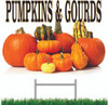Great Fall Color on this pumpkins & gourds yard sign.