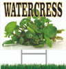 Nice Looking Watercress Sign Helps Get You Noticed.