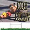 Cob Corn with Squirrel Eating Corn Cob.