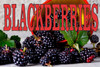 Blackberries Banner for farm stands.