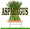 Asparagus Yard/Road Sign