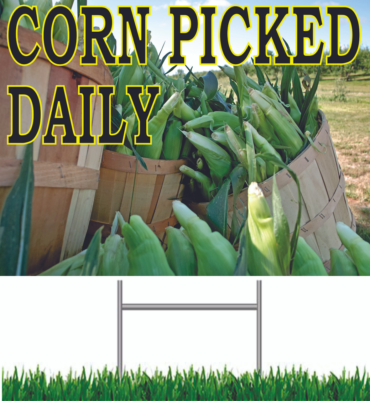 Corn Picked Daily Yard Sign, Corn Lovers Will Take Notice Of This Sign.