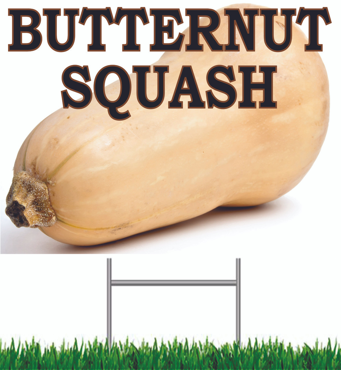 Butternut Squash Yard Sign is a sign that always gets noticed.