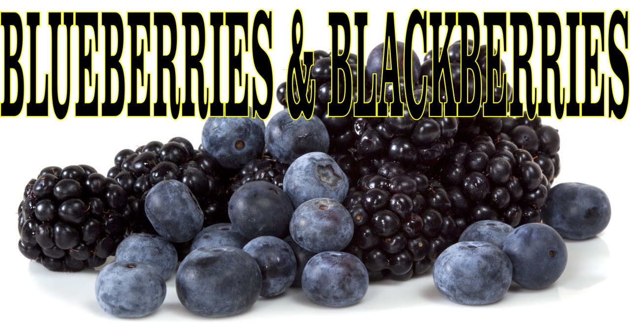 Pictures Of Blueberries And Blackberries