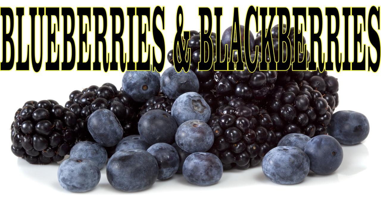 Blueberries & Blackberries Banner a Inviting Fruit Banner.