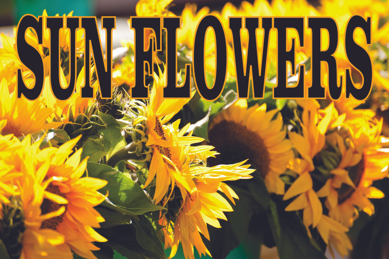 Sun Flowers Banner is Bright & Colorful Customers Will notice.