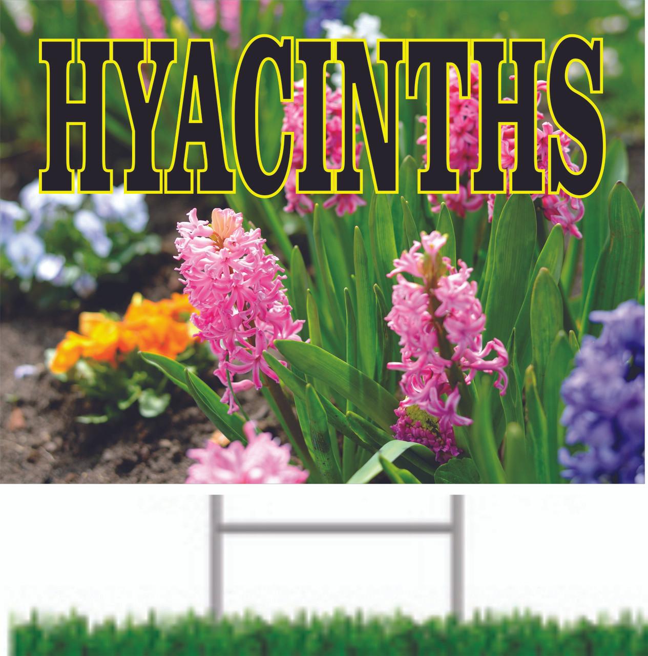 Hyacinths Road/Yard Bring in New Customers.