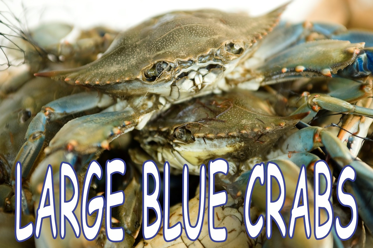 Large Maryland Blue Crab Banner Helps Get Customer Into You Business.