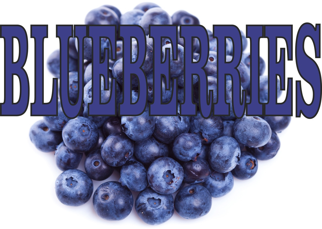 Blueberries Banner is perfect for produce stands and Fruit Markets.