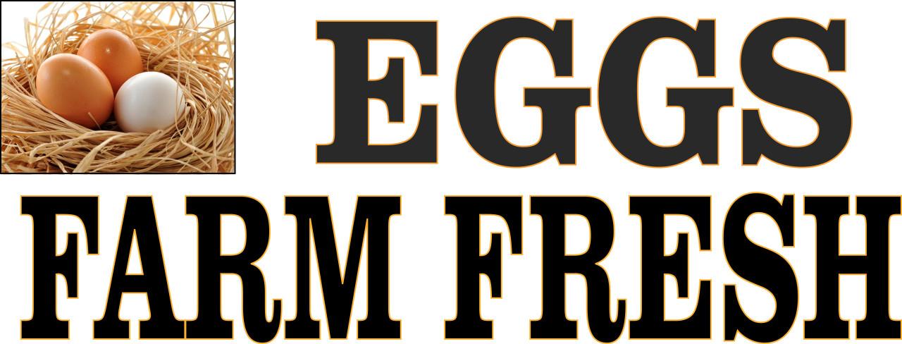 Eggs Farm Fresh Banner