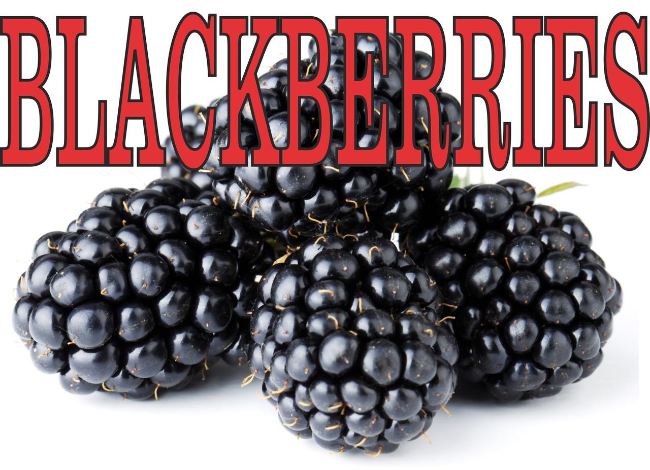 Blackberries Grest Banner for Fruit Markets.