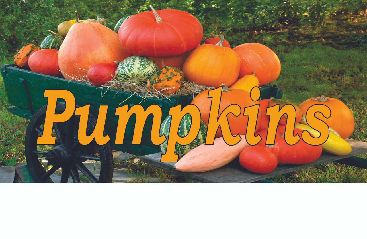 Vegetable Banner - Pumpkins Fall Colors Always Draw Great Attention.