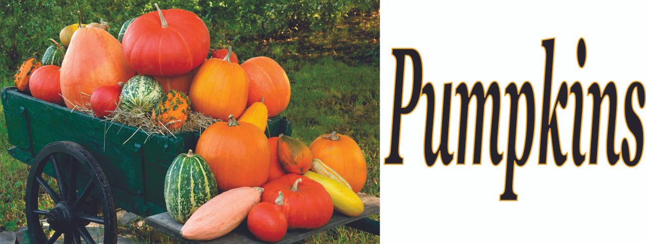 Pumpkins Banner SB 488