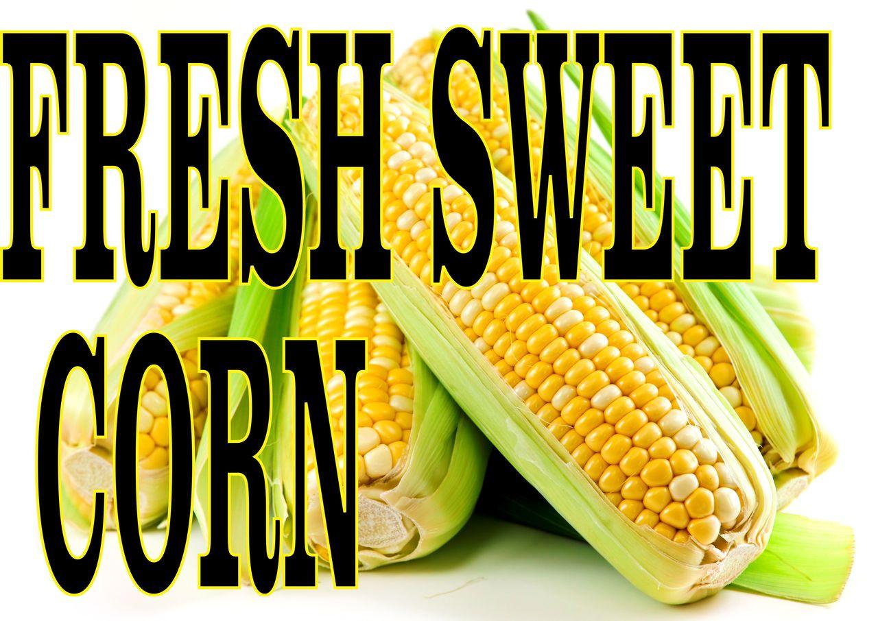 fresh sweet corn near me
