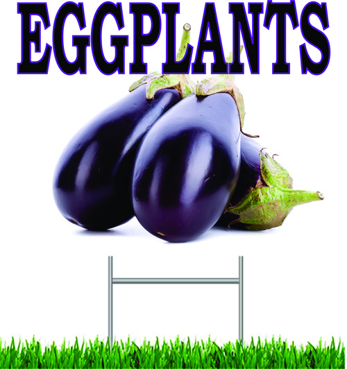 Eggplant Yard Sign this signs gets you noticed.