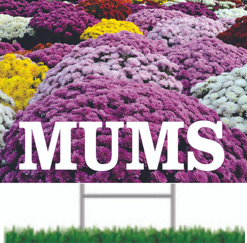Mums Road/Yard Sign is Very Colorful Helps Draw Customer In.