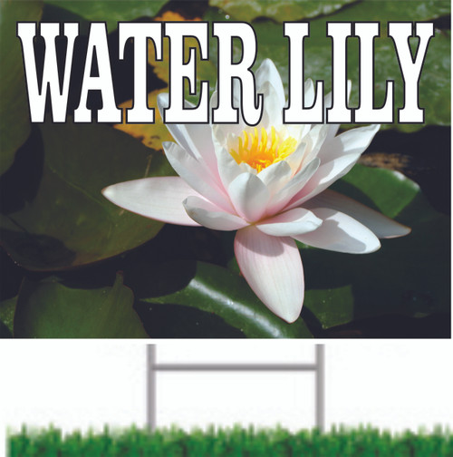 Pond with Water Lily in bloom Yard Sign.