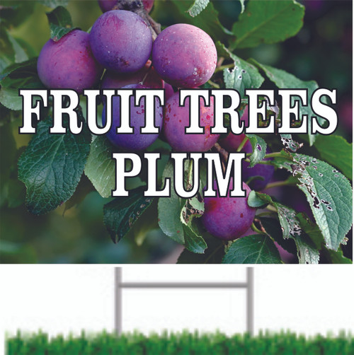 Fruit Trees Plums is a very colorful yard sign