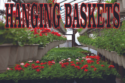 Fantastic Hanging Baskets Banner Draw Customers.