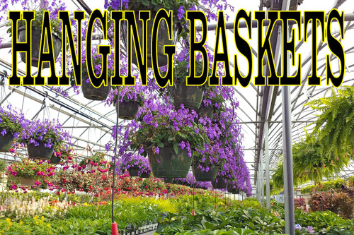 Nick Looking Hanging Basket Banner that Draw In Customers.