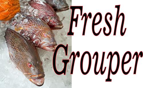 Fresh Grouper Fish On Ice Banner.