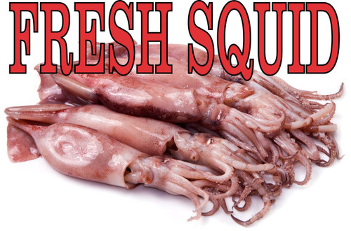 Fresh Squid banner In full color bring in new seafood customers.