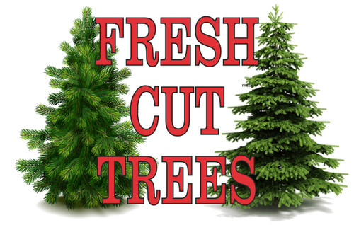 Fresh Cut Trees Banner one of Many Specialty Banners to get you Noticed.