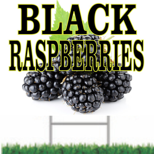 Black Raspberries Yard Sign for Produce Stands.