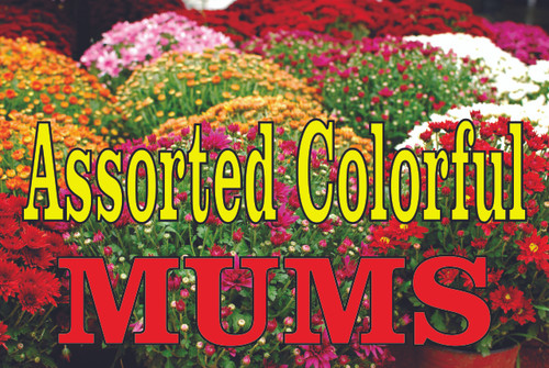 Assorted Colorful Mums Banner Nice Garden Center Banner.