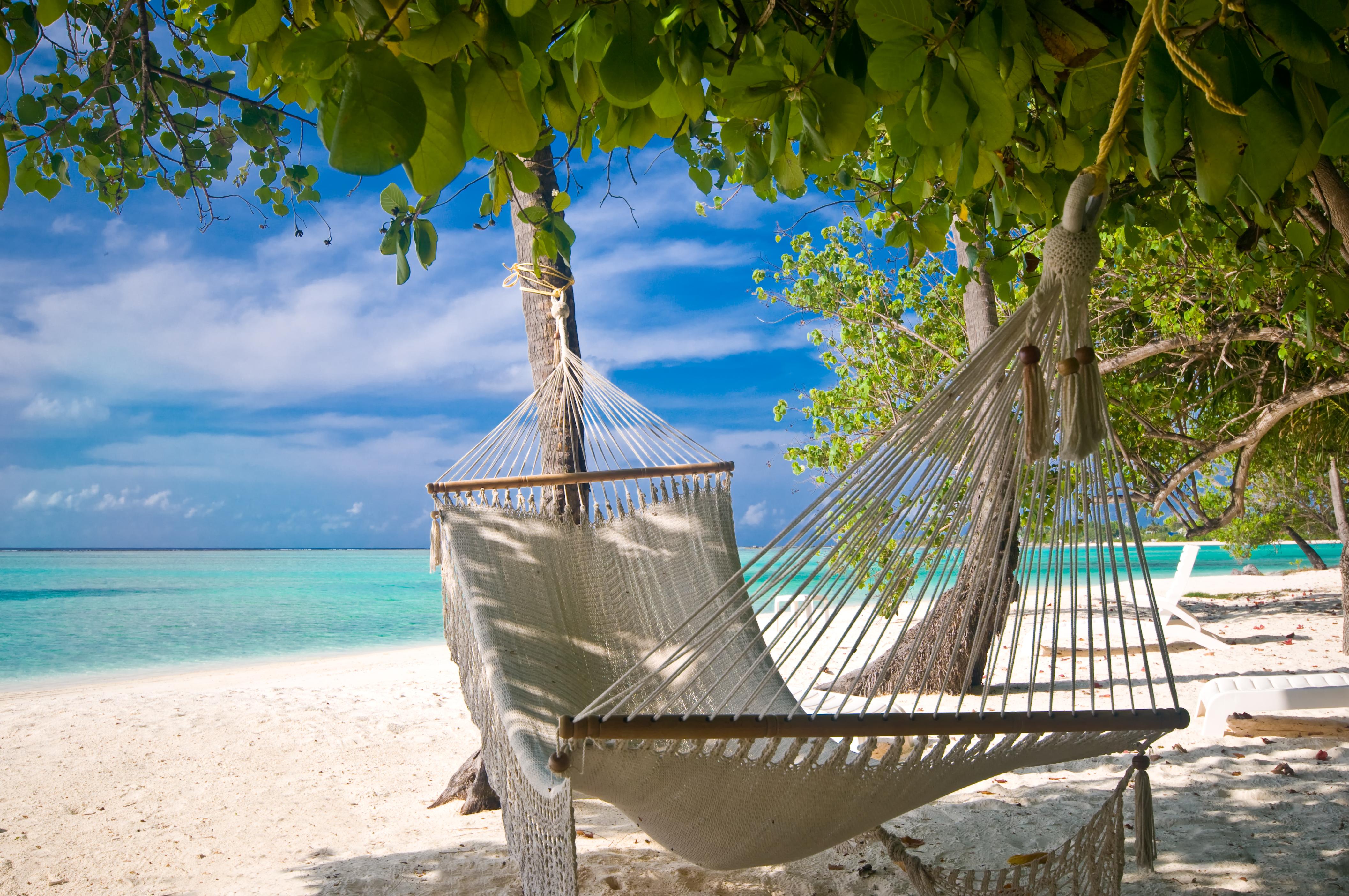 cw-701-beach-hammock.jpg