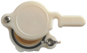 "Honey Gate Nylon - 1.5"" (38mm) Cream"