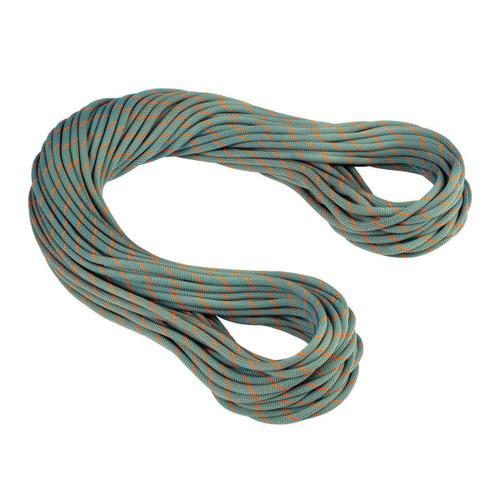9.9 Crag Workhorse Dry Rope