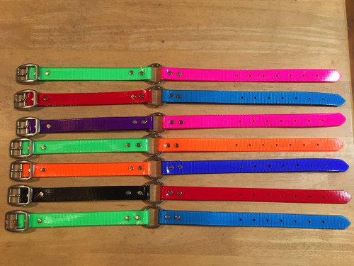 B2. DAY GLO COLLAR STAINLESS.2