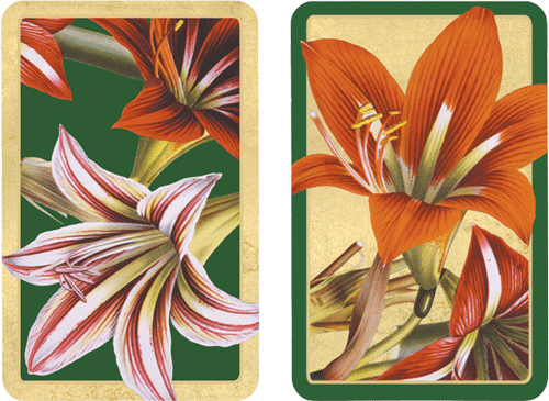 Playing Cards Amaryllis - Large Type