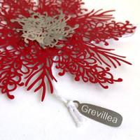 Grevillea snowflake