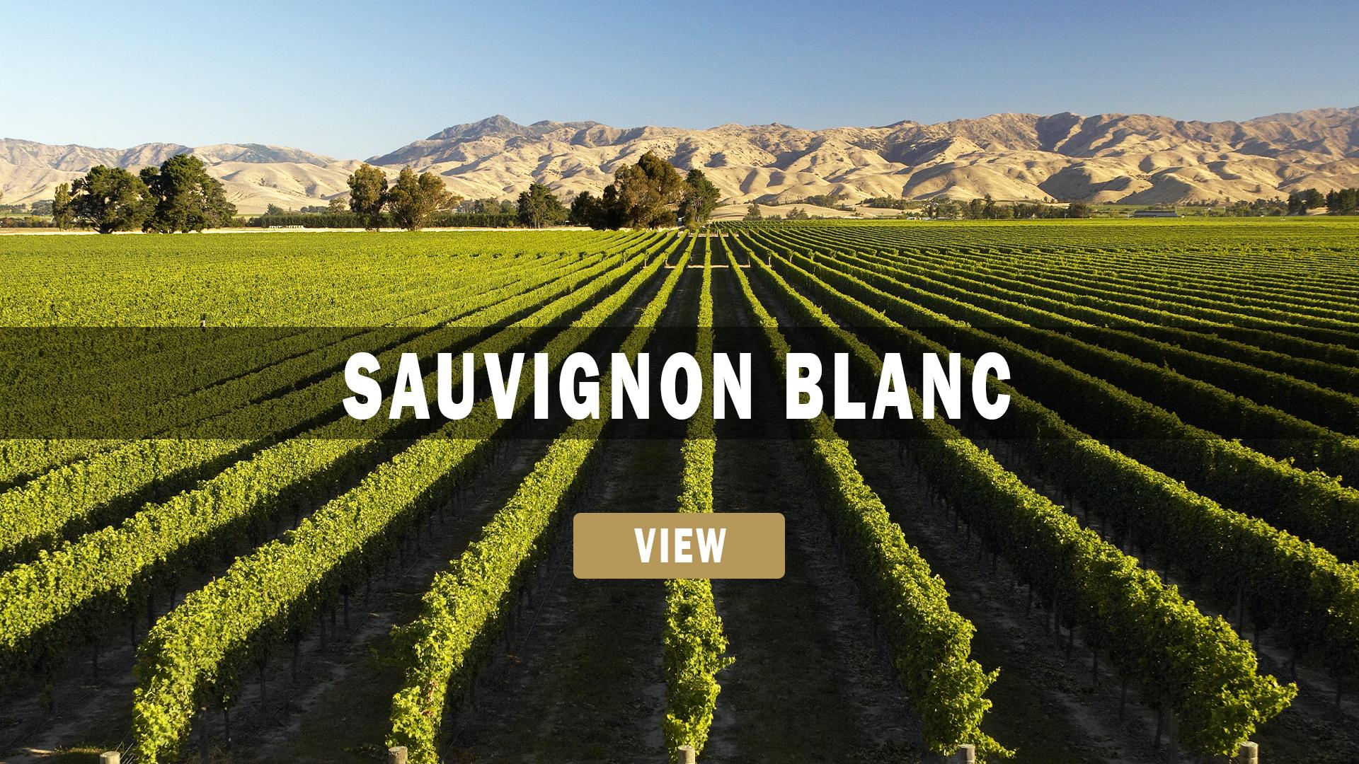 New Zealand and Marlborough Sauvignon Blanc