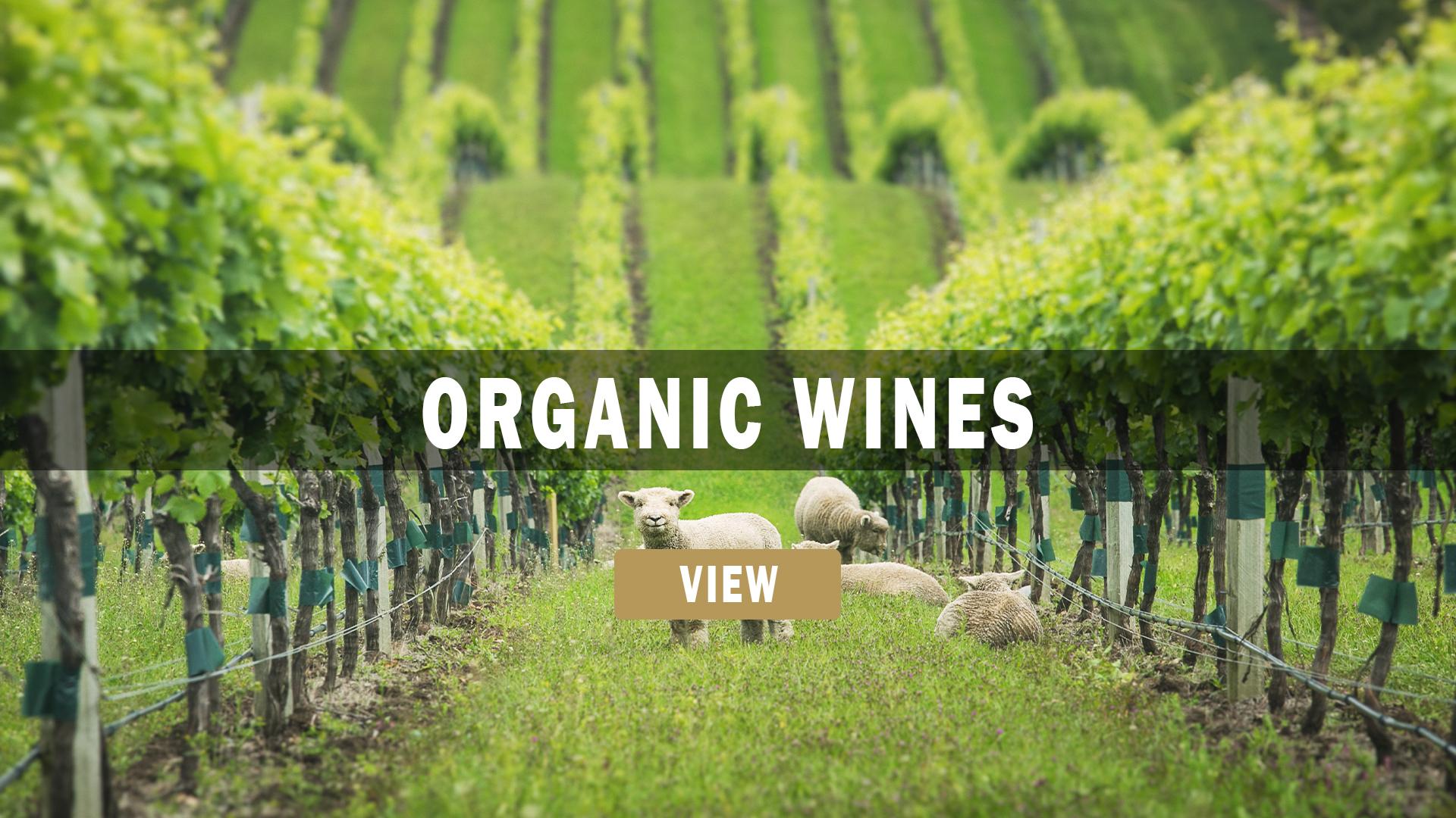 Organic and Biodynamic New Zealand wines