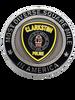 CLARKSTON POLICE GA COIN