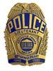 ARLINGTON COUNTY 50TH ANNIVERSARY  POLICE VA LT. BADGE