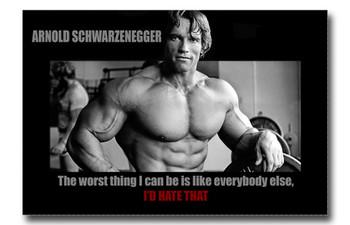 Arnold Schwarzenegger Conquer 8x12 Metal Sign