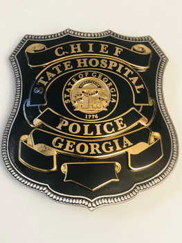 GEORGIA STATE HOSPITAL BADGE