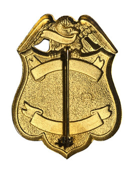 HOUSTON TX POLICE ARSON BADGE GOLD TONE