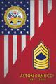 MILITARY USA FLAG VERTICAL PLAQUE