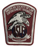 ASLET LAW ENFORCEMENT TRAINERS POLICE PATCH