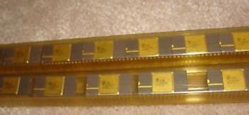 23 pcs ICM7170AIDG, INTERSIL IC  ( ICM7170)