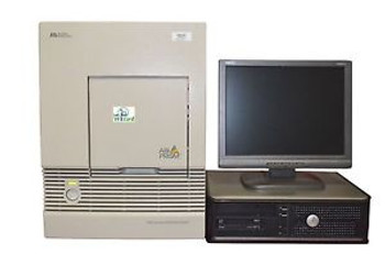 ABI 7000 Real Time PCR