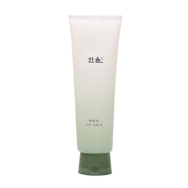 Hanyul Pure Artemisia Mild Cleansing Foam
