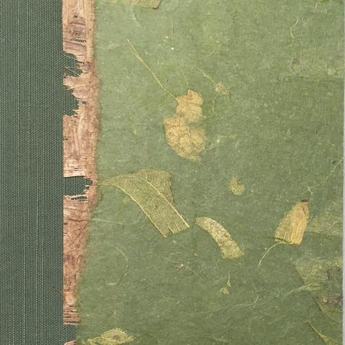 Moss Mango Leaf