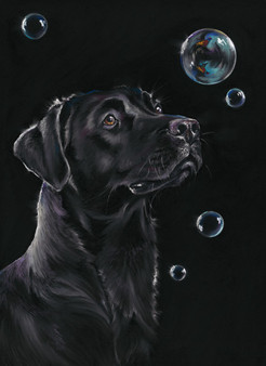 Labrador artwork by Kay Johns